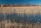 Bosque del Apache National Wildlife Reguge, New Mexico